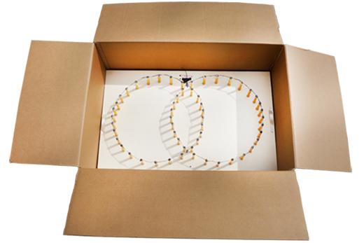 easybox lichterbild ringe im karton